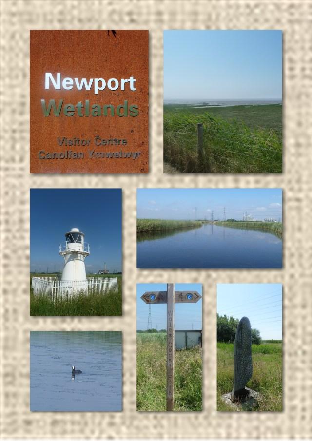 Newport Wetlands Centre