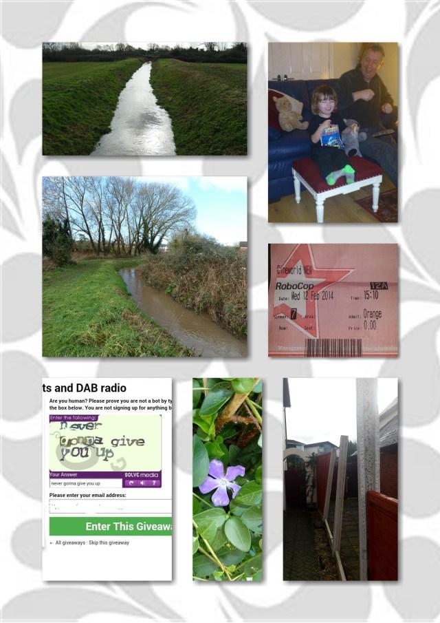 flooding, robocop, orange wednesday