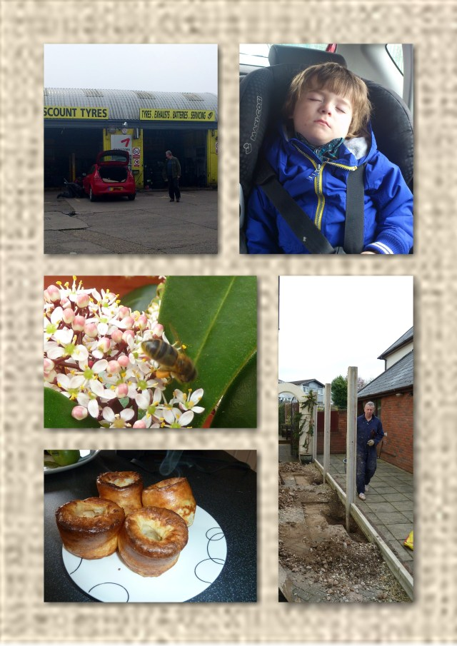 tyres, bee, yorkshire puddings