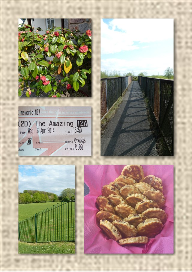 camelia, railway, bakestones, welshcake,
