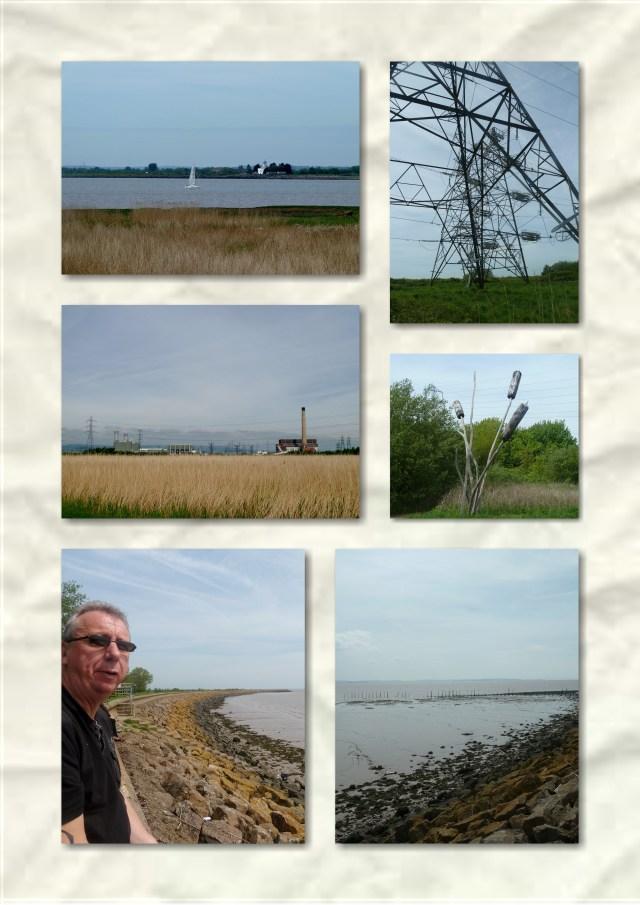 newport wetlands, goldcliffe seawall