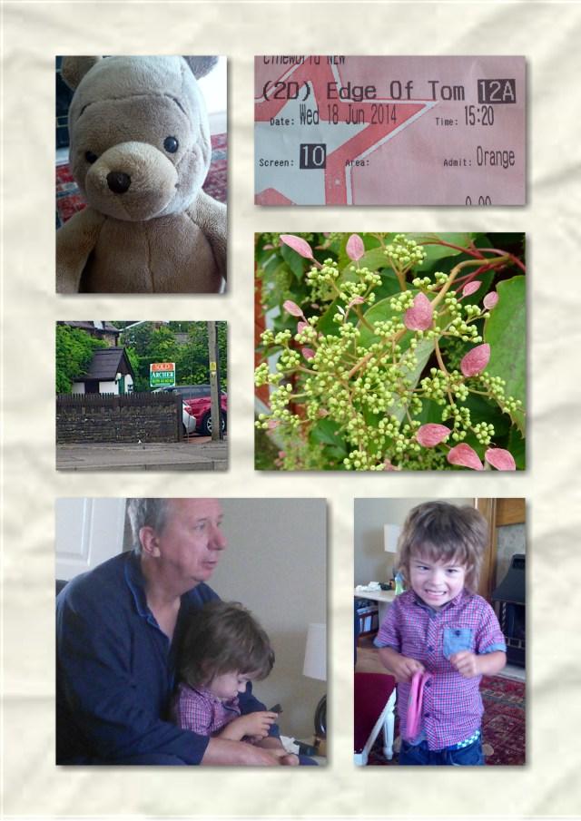 winnie the pooh, orange wednesday, flowers, play