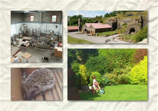 blaenavon ironworks, rhymney brewery, hedgehog