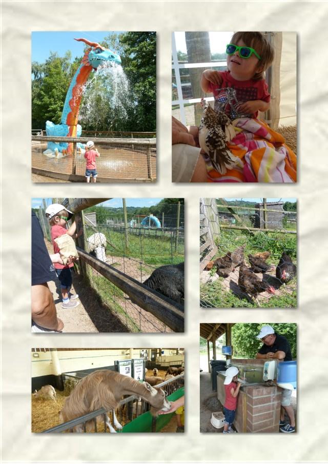 Soosie wales, Greenmeadow Community Farm