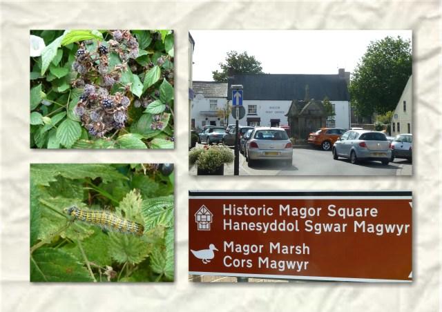 soosie wales, hedgerows, tourism