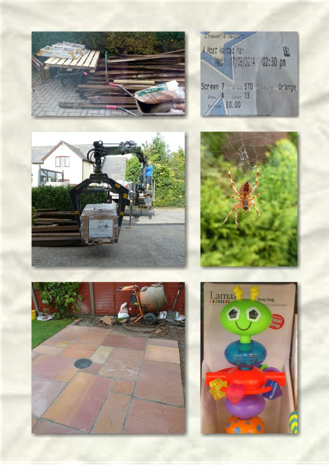 soosie wales, gardens, orange wednesday